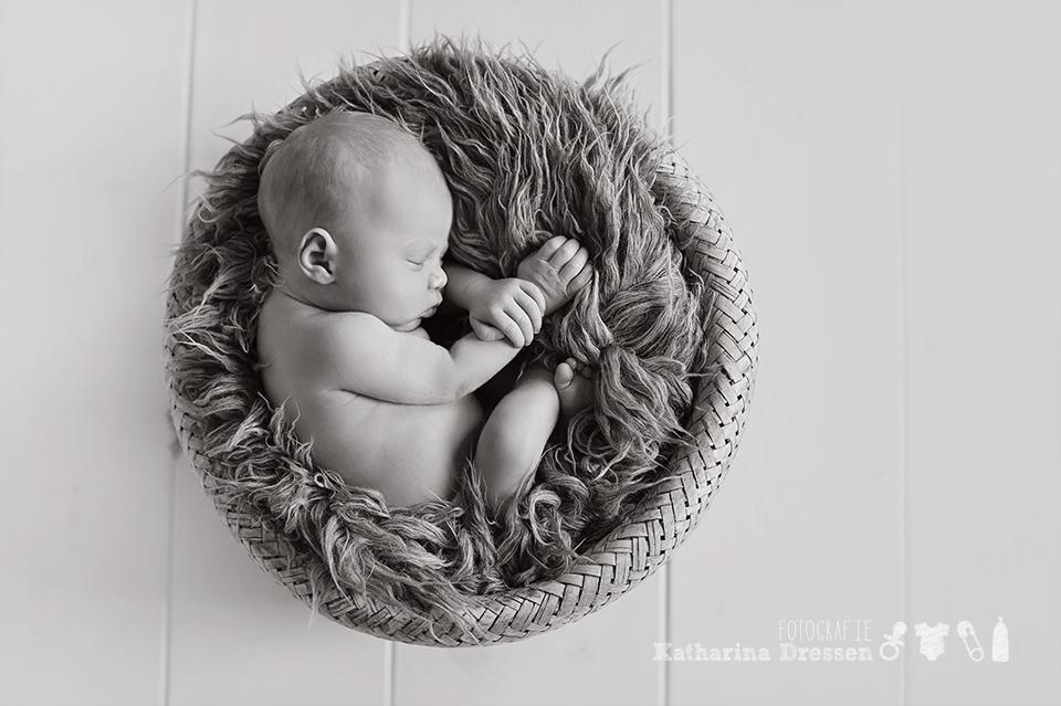 Fotostudio_Duesseldorf_Fotograf_Meerbusch_Babyfotograf_Neuss_NRW_6747